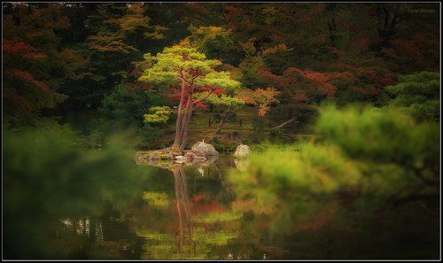 В японском саду