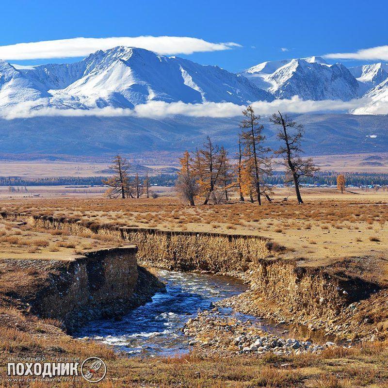 Курайская степь. Горный Алтай.photo preview