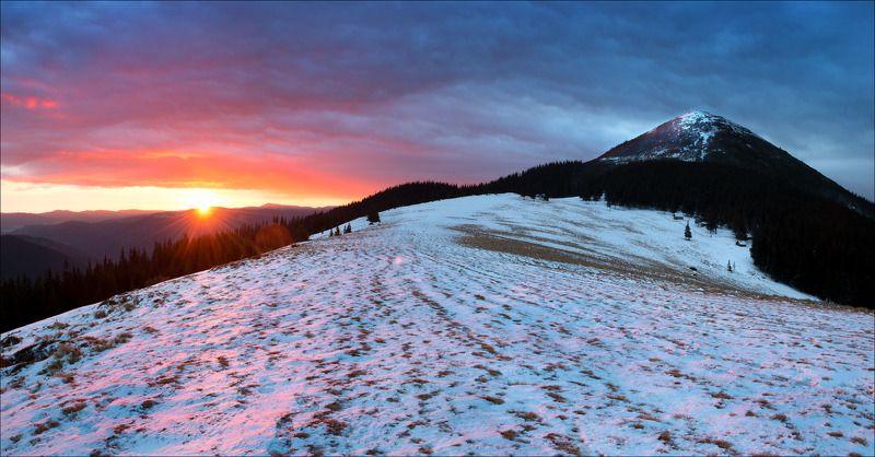 Утро на поляне Хомяковphoto preview