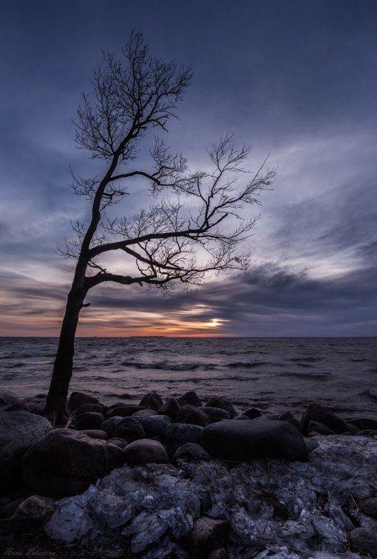 Холодный вечер Балтикиphoto preview