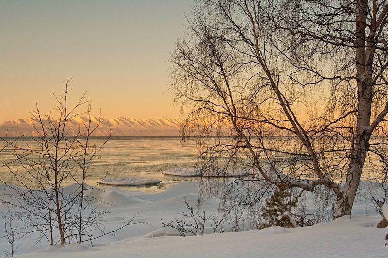 бурятия, байкал, зима, лед, мыс, святой нос, деревья * * *photo preview