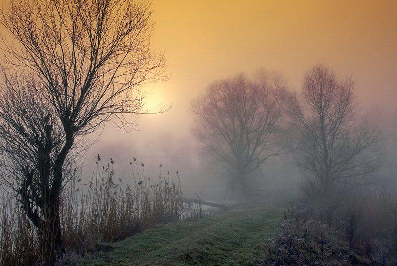 пейзаж, зима, утро, туман, там где теряется реальность, lad_i_mir Утро туманноеphoto preview