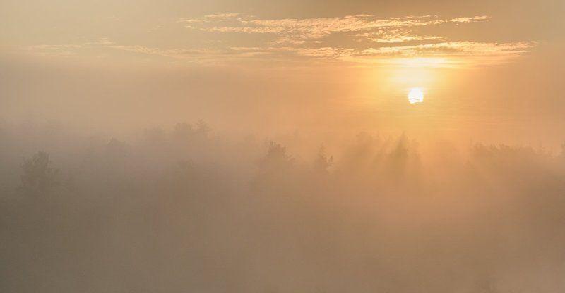Прекрасное утро!photo preview