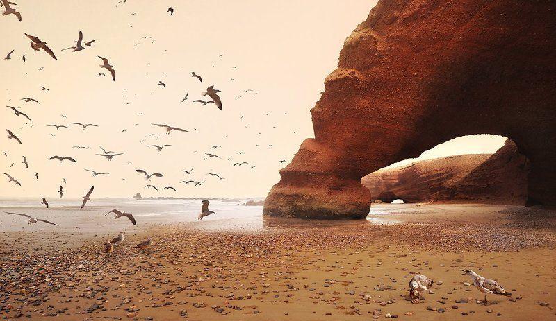 marokko, legzira, beach, seagulls Легзираphoto preview