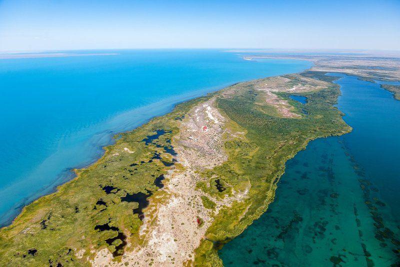 grigoriy bedenko, milvus migrans, алматинская область, балхаш, биоразнообразие, вода, григорий беденко, или, казахстан, каратал, китай, минерализация, озеро, прибалхашье, птицы, река, семиречье, синцзянь, синьцзянь-уйгурский автономный р, солончак, солонч # Озеро Балхаш с высоты птичьего полета #photo preview