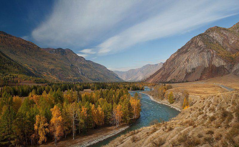 Горный алтай, Река Чуя, Чуйский тракт В пойме Чуйского трактаphoto preview