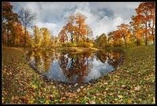 про_Свет Осени...