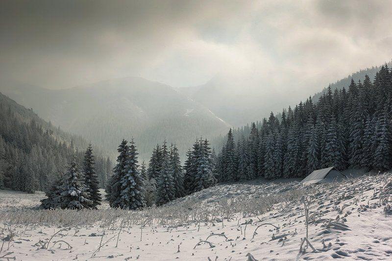 А просто зима...photo preview