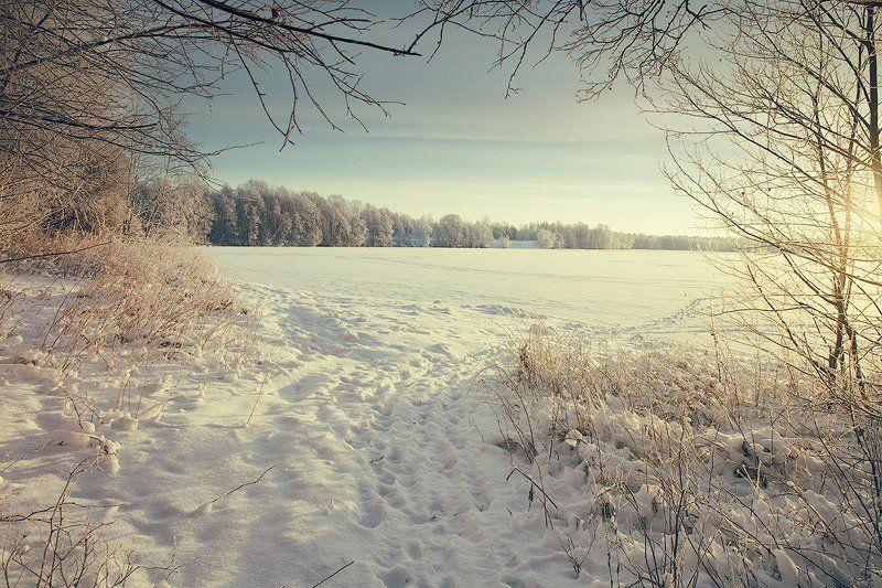 Dyadyavasya, Зима, Лес, Лёд, Мороз, Озеро, Пейзаж, Россия, След, Снег, Тропинка, Утро Обрамление для озераphoto preview