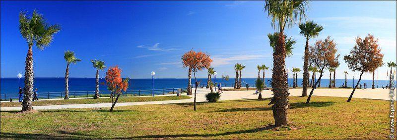 Фото Испании, пальмы, море, набережнаяphoto preview