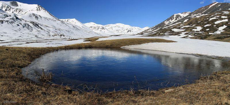 алтай, озеро, весна Озеро в долине реки Тараphoto preview