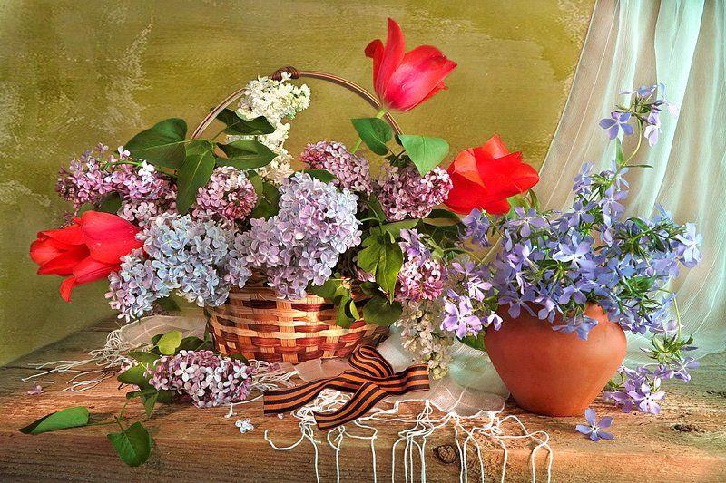Опять весна на белом свете!photo preview