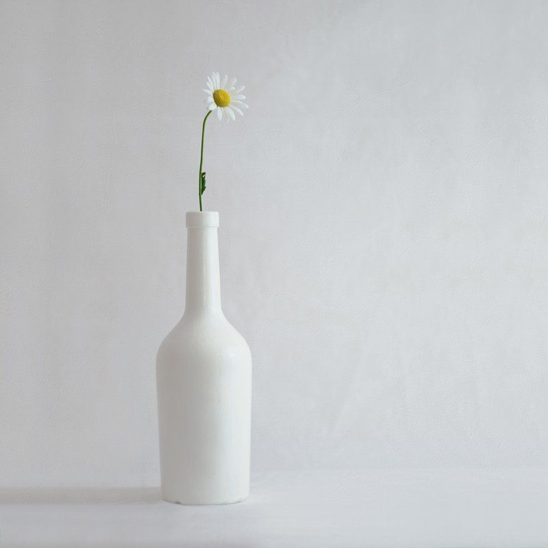 ромашка, бутылка, белое Одинокая ромашка.photo preview