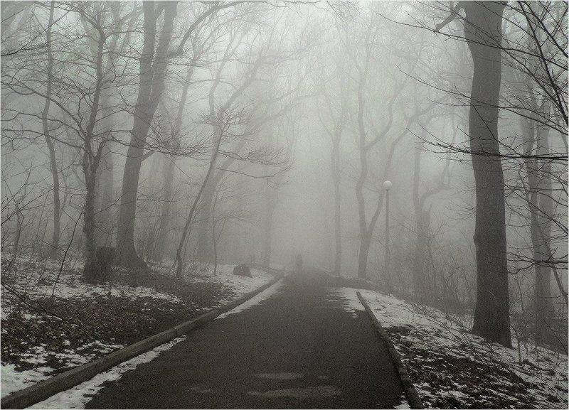 Туманноеphoto preview