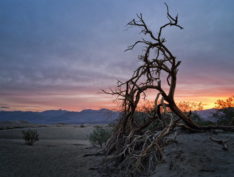 Morning in Death Valleyphoto preview