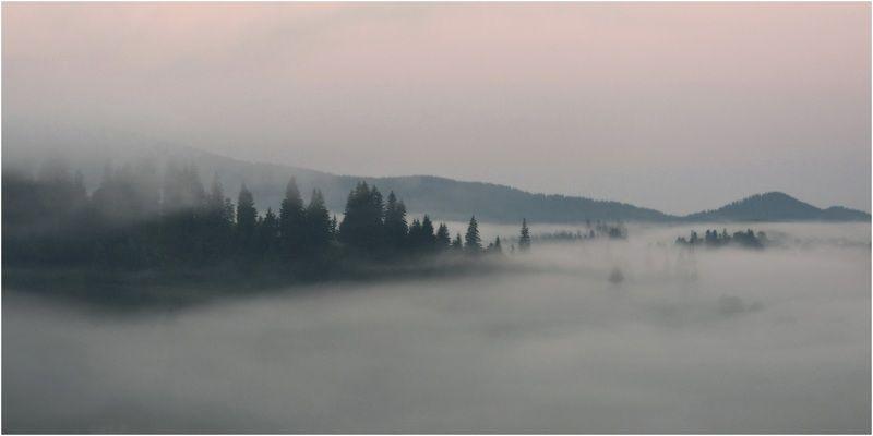 Карпаты, Ворохта, Горы, утро-вечер Postcard Carpathiansphoto preview