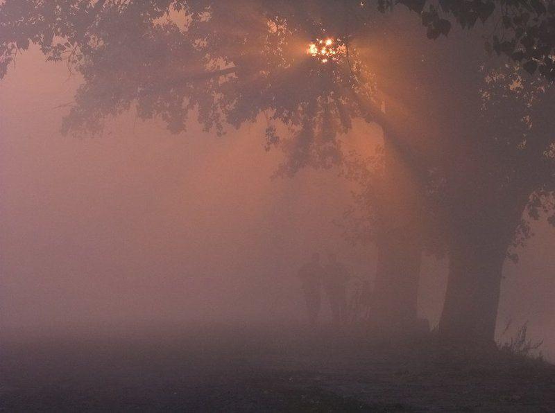 Восход солнца, Деревья, Люди, Пейзаж, Рассвет, Туман, Утро Разговор по душамphoto preview