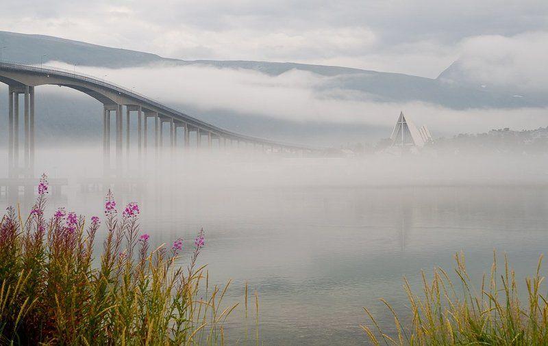 Туман над фьордомphoto preview