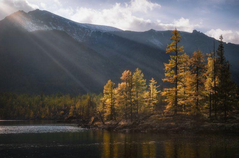 В лучах сентябрьского солнца…photo preview