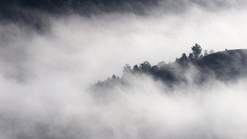 булгария, гора, туман, утро photo preview
