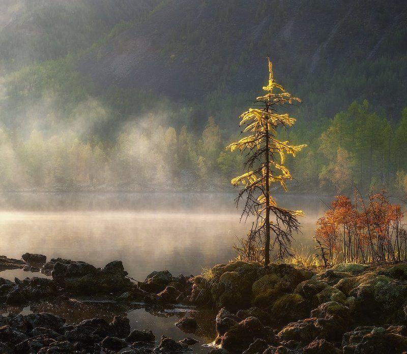 Сентябрьским солнцем согретая…photo preview