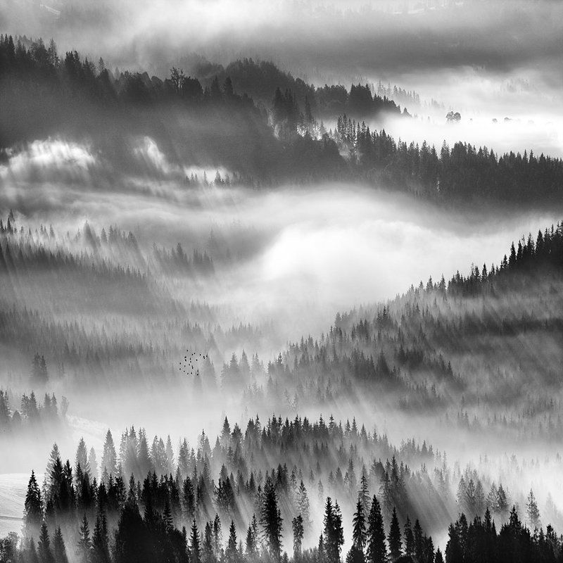 Fog,mountains Valley fog ...photo preview