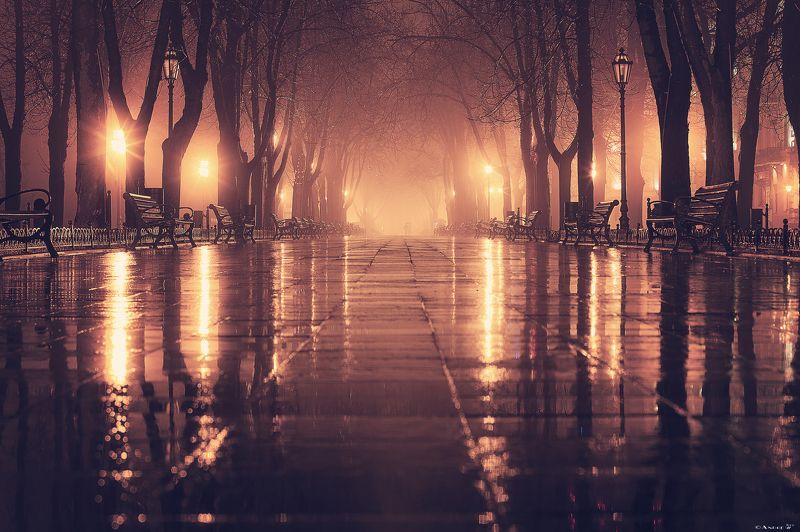 город,ночной город,туман,дождь,огни Осенний бульварphoto preview