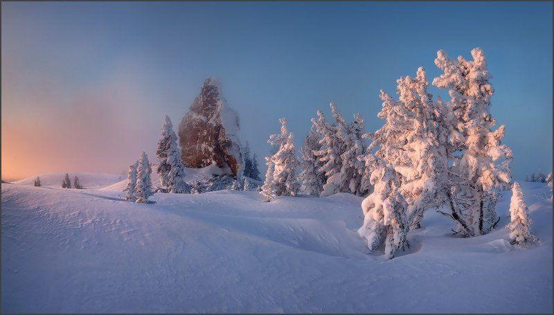 Верблюды, Зима, Рассвет, Утро, Шерегеш, Ярославский Виталий Утро красит нежным светом...photo preview