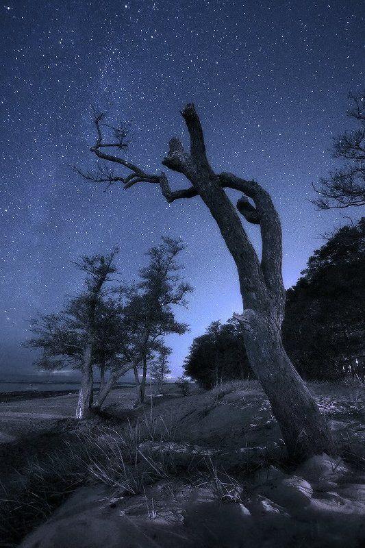Тихий шепот звездphoto preview