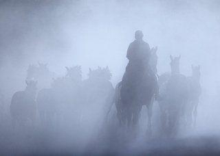 Искупаться в тумане