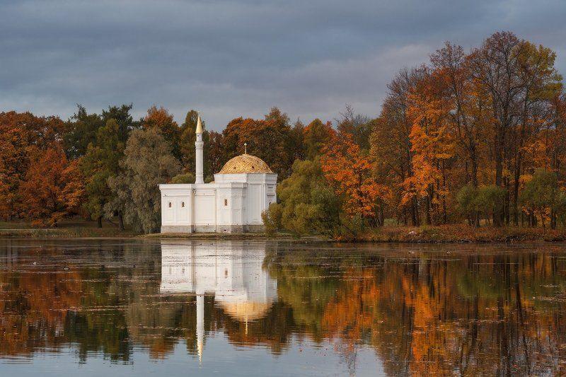 пушкин, царское, село, парк, александровский, осень, россия про Осень...photo preview