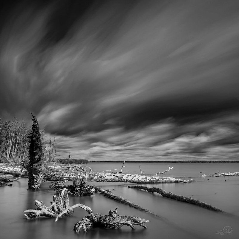 Black and white, Clouds, Landscape, Long exposure, Tree Звуки тишиныphoto preview