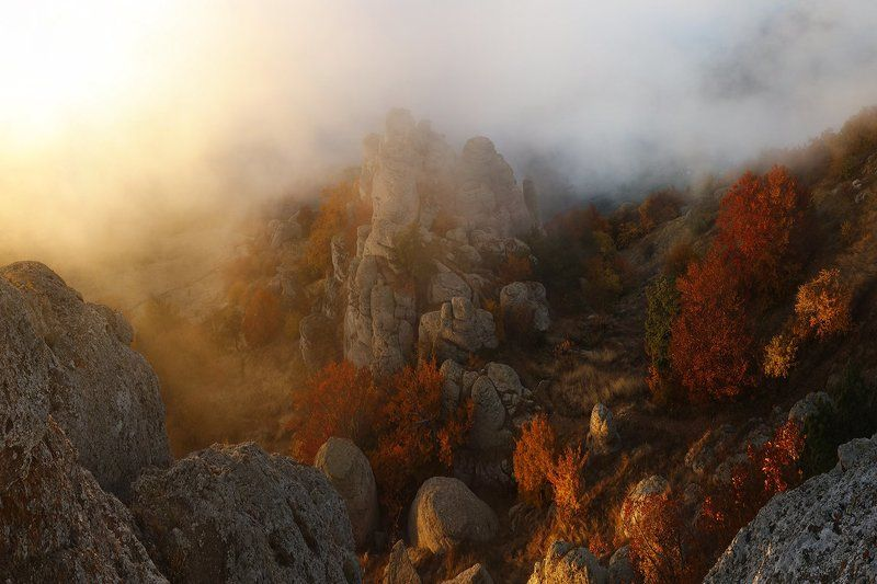 Осенним утром.photo preview