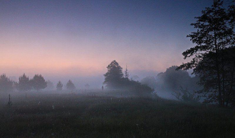 Неман, утро, туман, путник Ранний путникphoto preview