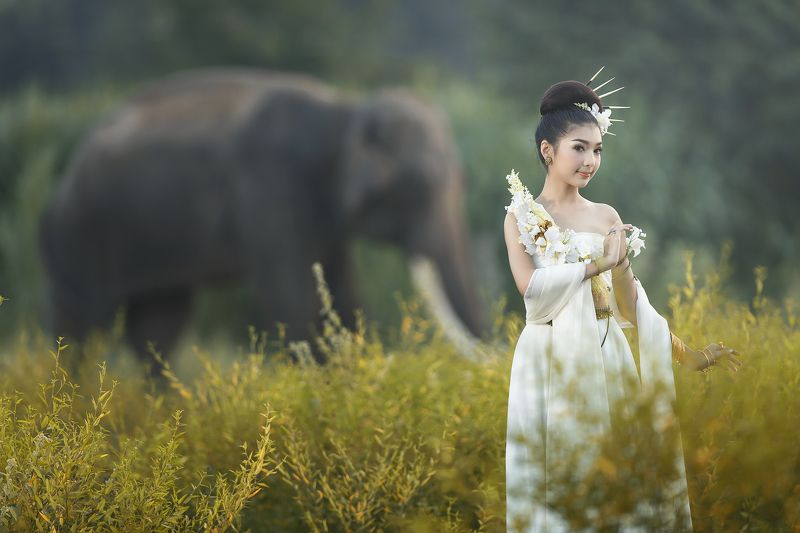 Animals, Asia, Asian, Beautiful, Cute, Elephant, Girl, Thai, Thailand, Woman Girl and elephantphoto preview