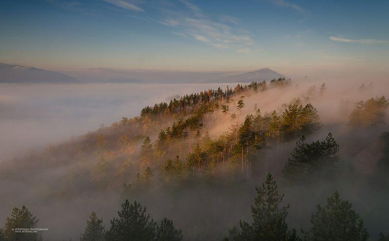 fogg, morning, autumn, Belogradchik, Bulgaria, trees, sky, landscape  Утро туманноеphoto preview
