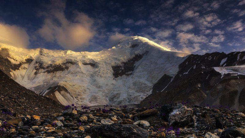 казахстан, высота, вечер, пейзаж, горы Лед и цветыphoto preview