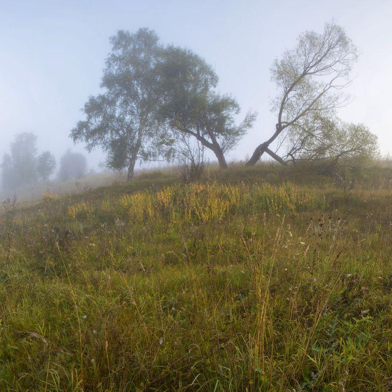 Утро на реке Океphoto preview