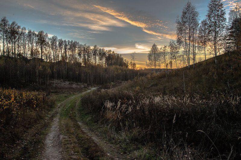Цилиакус тамара, Russia