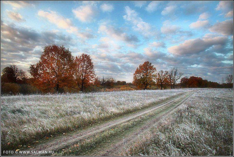 осень,соколки, Заморозки.photo preview