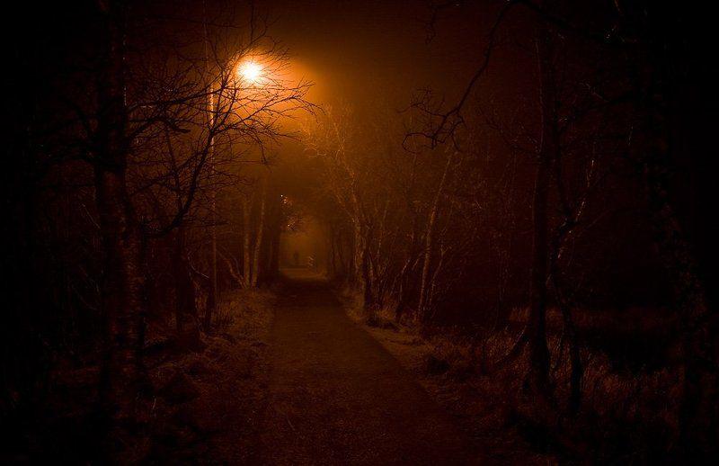 Запоздалая к Хэллоуину.photo preview