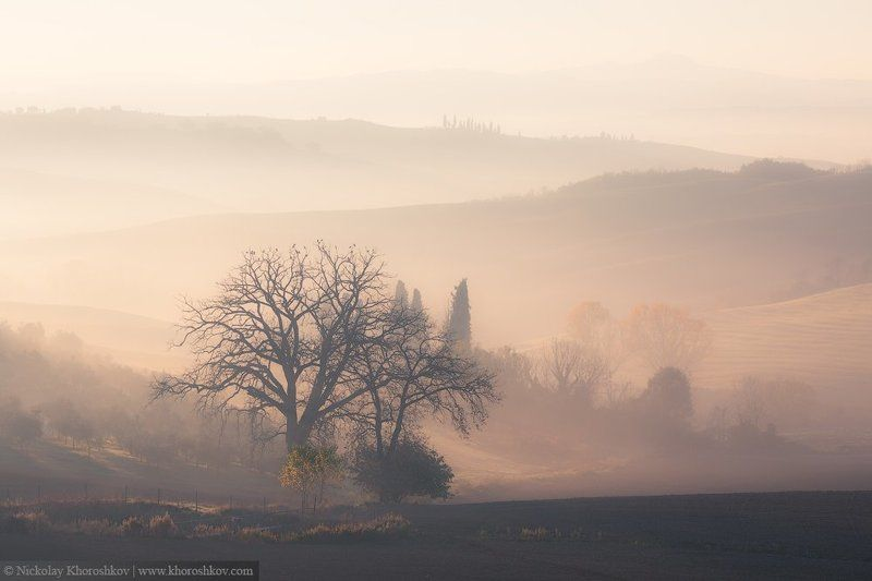 Италия, Пейзаж, Рассвет, Тоскана, Утро Нежность утраphoto preview