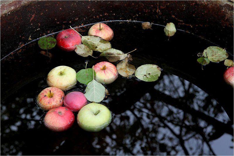 Осеннее.photo preview