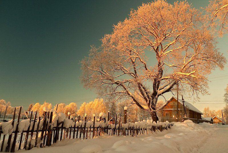 В деревне вечереет... Питерская губерния.photo preview