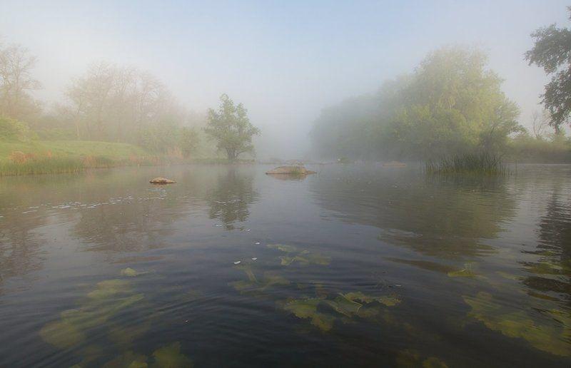 Река. Туман. Нежное пробуждение.photo preview