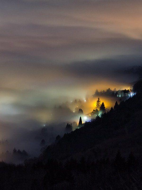 ночной пейзаж, ночь, тумань Тихая ночьphoto preview