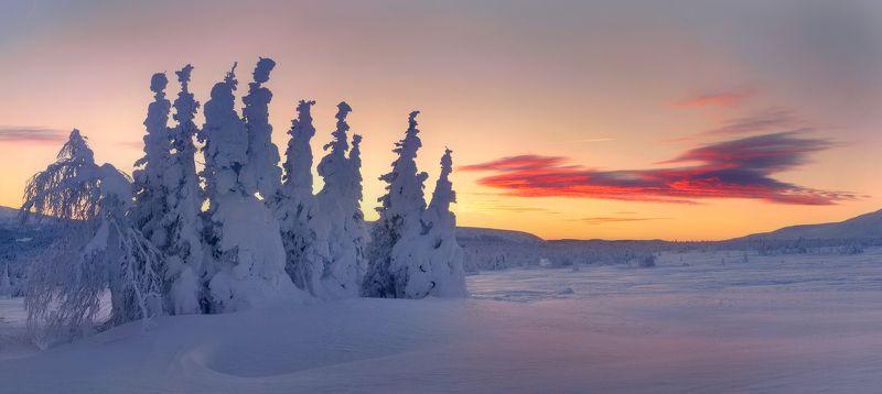 В снегах обетованныхphoto preview
