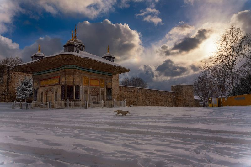 istanbul,winter,topkapi palace, istanbul winterphoto preview
