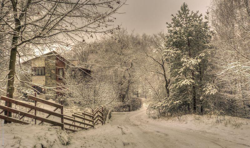 в снегуphoto preview