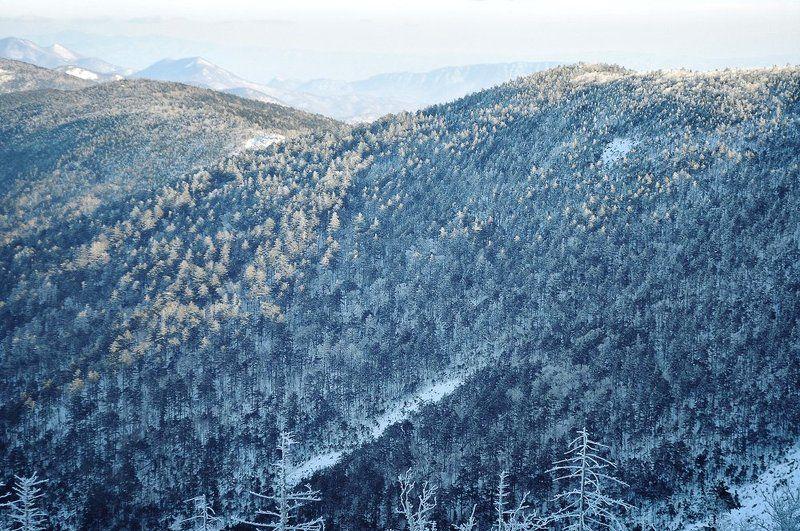 сихотэ-алинь, ливадийский, хребет, горы, тайга, иней, приморье, приморский, дальний восток, дальневосточный Про зимние фактурыphoto preview